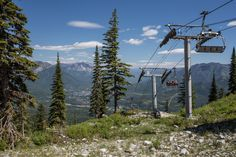 Take a ride on the Timber Side! The Timber Express Chairlift will whisk you up the top of the mountain where you will experience spectacular views of the Elk Valley. In addition to the breathtaking mountain scenery, you'll see our native trees & alpine wildflowers, and you may be lucky enough to catch a glimpse of our local wildlife.