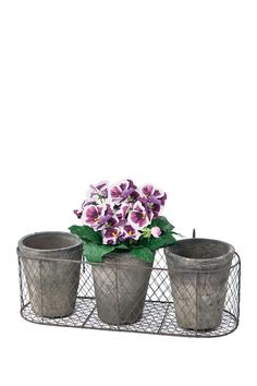 Natural/Grey Round Terracotta Pots In Wire Caddy
