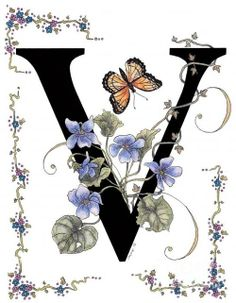 Violets And A Viceroy Butterfly Print By Constance Widen