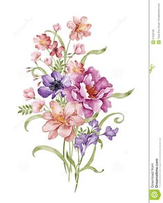 watercolor-illustration-flower-set-simple-white-background-51532195.jpg (1043×1300)