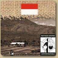 Prix: 11,30 $ pour une livre    Équitable Bio - Sumatra Gayo Mountain  Le Sumatra Gayo Mountain est café corsé et long en bouche qui évoque la force de son symbole : l'éléphant d'Asie. 454g (1 lb)