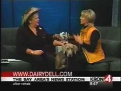 Jan Wahl with Camilla Gray-Nelson of Dairydell dog training & kennels on KRON TV Dog Training Tips, The Ranch, Camilla, Dog Lovers, Gray, Tv, Dogs, Ash, Doggies