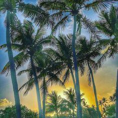 Ein herrlicher Sonnenaufgang. #miami #miamibeach #miamilife #miamiflorida #florida #usa #urlaub #sommer #reisen #travel #travelblogger #impression #oceandrive #keywest #miamikeys #floridakeys #islamorada  @islanderislamorada #sobe