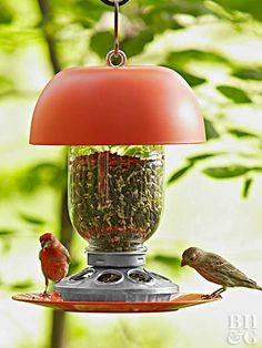 Keep birds stopping by year-round by offering them a continuous supply of food with this DIY bird feeder.