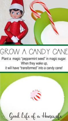 Fun and easy elf on the shelf ideas for toddlers. Fun and easy elf on the shelf ideas. Elf on the shelf ideas for busy time, messy time, and mommy needs a break time. Fun family elf on the shelf traditions.