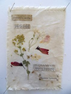 Pressed flowers on cloth (and maybe framed for wall collage? Moleskine, Pressed Flower Art, Arts And Crafts, Diy Crafts, Idee Diy, Nature Journal, Botanical Art, Flower Crafts, Dried Flowers