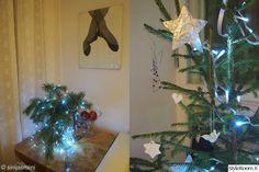 havu, joulukuusi, kuusenoksa, jouluvalot, joulusisustus
