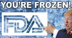 Trump Freezes FDA & Puts Century Cures in Jeopardy New Program, The Agency, Military Personnel, A Decade, 21st Century, The Cure, How To Apply, Politics, Medical