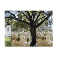 Outdoor ceremony site -- natural or add decor « Weddingbee Boards found on Polyvore
