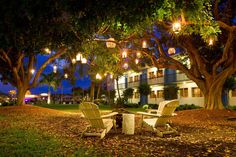 Des éclairages de Fête pour votre jardin