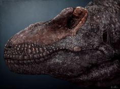 Mark Witton.com Blog: Did tyrannosaurs smile like crocodiles? A discussion of cranial epidermal correlates in tyrannosaurid dinosaurs