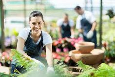 Looking to start a new small business? Here are a few helpful steps to get you started! - How to Start a Small Business in a Few Hours - Yahoo Small Business Advisor Business Advisor, Business Ideas, Business Quotes, Business Articles, Tips Belleza, Stock Foto, Starting A Business, Hydroponics, Gardening