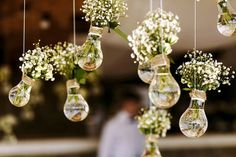 Hanging Vase Idea Part One: Lightbulb Planters
