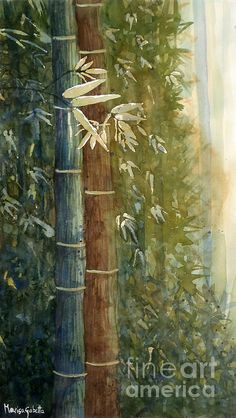 Bamboo - Watercolor - Marisa Gabetta