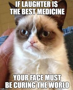 Grumpy Cat <3 Your face... this happens ALL the time!