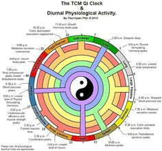 Nice diagram maps Chinese Qi Clock with what's going on in the body! - Abba