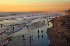 summer setting by Karol Franks, via Flickr