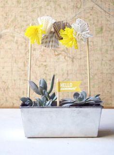 Suculentas... Nos encantan!  http://milejardin.com/ #floristeria #florist #Alcañiz | DIY - wouldn't this make a cute centerpiece?