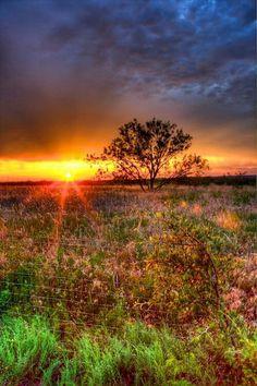 Frisco,Tx sunrise