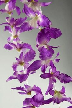 Orchid Leis Purple & White