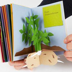 pop-ups, handmade, book, artist book, paper engineering, DIY, children's book