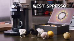 Nest-Spresso I Want One Of These! $0$ :D Baby Chicks, Tropical, Nespresso, Kitchen Appliances, Nest, To Tell, Old Advertisements, Diy Kitchen Appliances, Nest Box