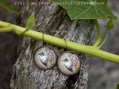 Woodpecker earrings Star Photography, Nature Photography, Holidays In Norway, Etsy Earrings, Handmade Items, Jewelry Making, Pendant, Color, Hang Tags