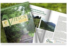 Revista Viesca Astur. Revista número 4 de Enero del 2012.  Publicación Oficial de la Asociación de Propietarios Forestales de Asturias (PFA).