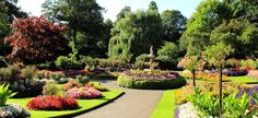 Cambridge University Gardens  nyti.ms/1f6yr0q Cambridge University, Ms, Gardens, Travel, Viajes, Outdoor Gardens, Destinations, Traveling, Trips