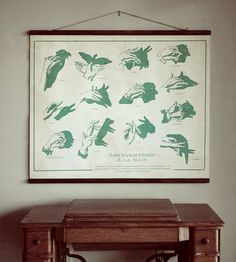 A throwback to old schoolroom posters, with an arguably even more educational twist, this hand puppet chart is equal parts informative and entertaining.