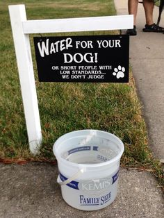 Water for your Dog! Or for short people with low standards.... we don't judge!