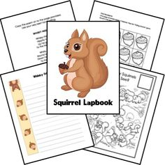 Squirrels and Their Habitats Unit Study and Lapbook Printables; matches Burgess Animal Book