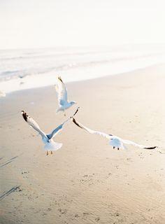 seaside pretty * {once wed -- Poseidon Wedding, photography by jose villa} Jolie Photo, Beach Cottages, Beach Bum, Summer Beach, Nude Beach, Summer Picnic, Beach Trip, Seaside, Summer Vibes