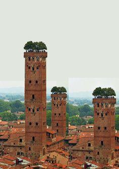 The Imagelist: Torre Guinigi, Lucca Brick Architecture, Vernacular Architecture, Organic Architecture, Futuristic Architecture, Ancient Architecture, Amazing Architecture, Architecture Details, Landscape Architecture, Workshop Architecture