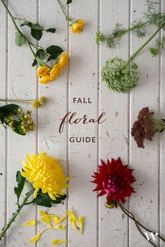 The Seasonal Flower Guide Series: Fall Florals