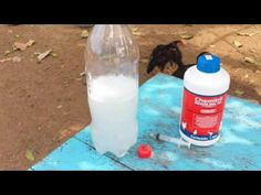 Série medicamentos para pintinhos livres de doenças(Chemitril oral 10%) - YouTube