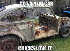 Car Chicken Coops
