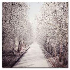 Philippe Sainte-Laudy 'Milky Way' Canvas Art | Overstock.com Shopping - The Best Deals on Canvas