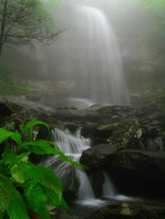 ✮ Rainbow Falls, Great Smoky Mountains National Park