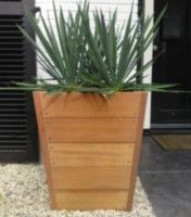 Hardwood by Adezz Flower Boxes, Flowers, Potted Plants, Hardwood, Planter Pots, Home Decor, Gardens, Plants, Nth Root