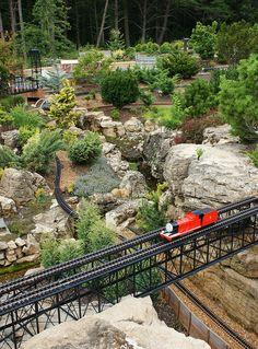 Garden railway (Dwarf conifers with Thomas the Train)