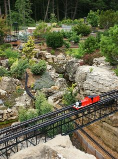 Garden railway (Dwarf conifers with Thomas the Train)