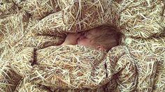 cosy sleep in a stack of straw / HAYKA bed linen / www.hayka.eu