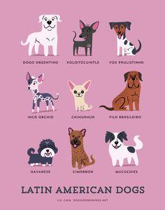 doggiedrawings culturainquieta