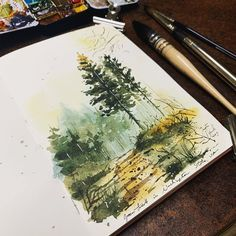 Watercolor Trees, Watercolor Landscape, Watercolor Paintings, Watercolor Sketchbook, Art Sketchbook, Gouache, Art Diary, Forest Painting, Sketch Painting
