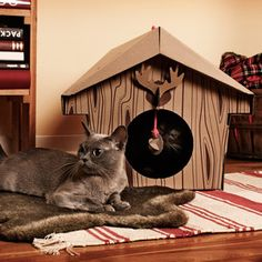 Cabin Cat Playhouse, $28, now featured on Fab.