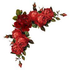 Blumenranken - Tendrils of flowers - Vrilles de fleurs Art Floral, Frame Floral, Floral Rosa, Floral Vintage, Flower Frame, Vintage Paper, Vintage Flowers, Red Flowers, Vintage Prints