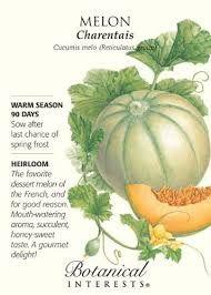 Image result for charentais melon