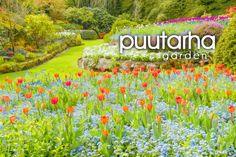 puutarha ~ garden