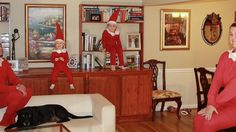 funny family christmas card photos - Google Search